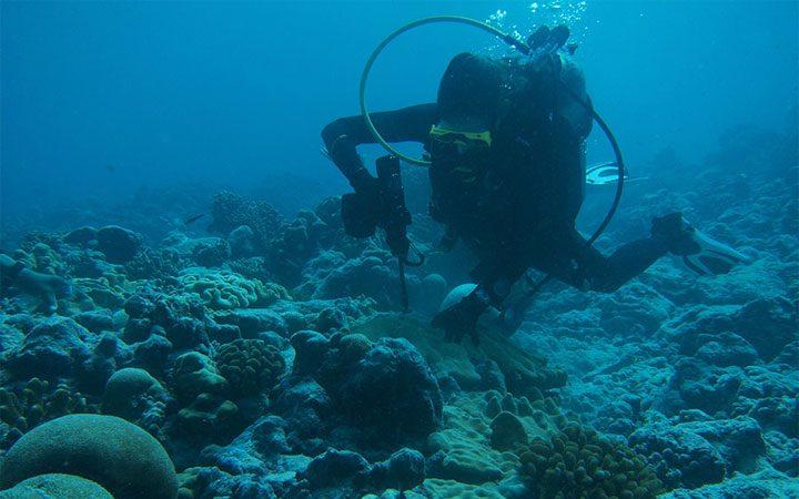 Máy khoan búa dưới nước Nemo