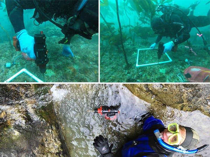 Sử dụng máy khoan dưới nước Nemo